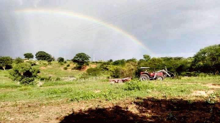 Prefeitura de Igaracy investe no setor agrícola do município, beneficiando mais de 195 famílias